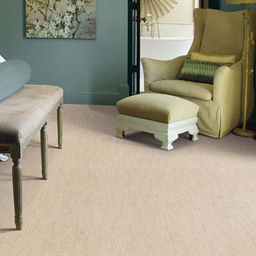 Caress Carpet by Shaw in Shrewsbury, PA